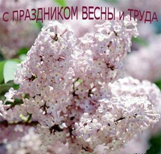 Вас с праздником весны и труда – 1 мая