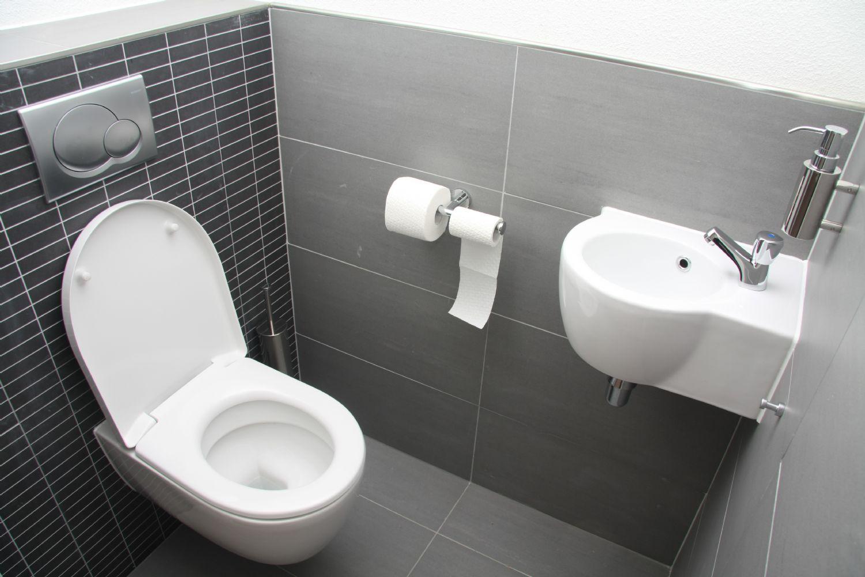Дизайн интерьера туалета с умывальником