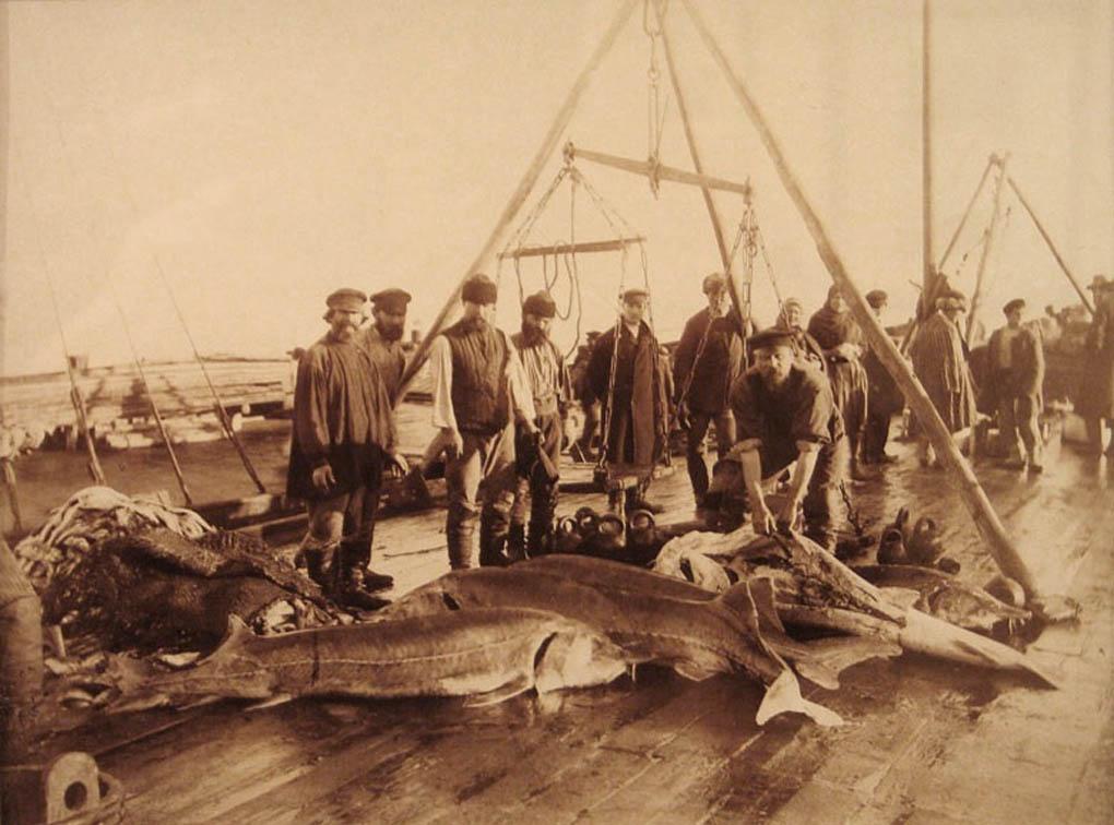 рыбаки сарапула